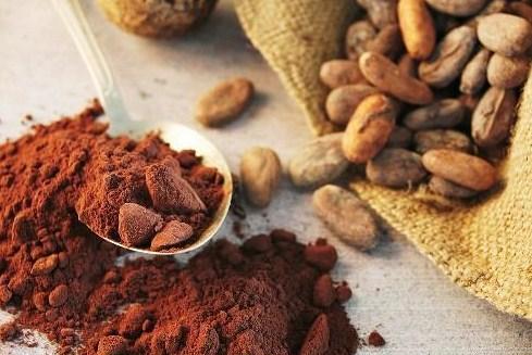وارد کننده پودر کاکائو