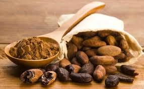 وارد کننده پودر کاکائو مالزی