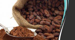 پودر کاکائو قلیایی