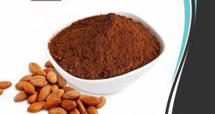 عرضهکننده انواع پودر کاکائو
