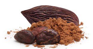 بهترین مارک پودر کاکائو دنیا
