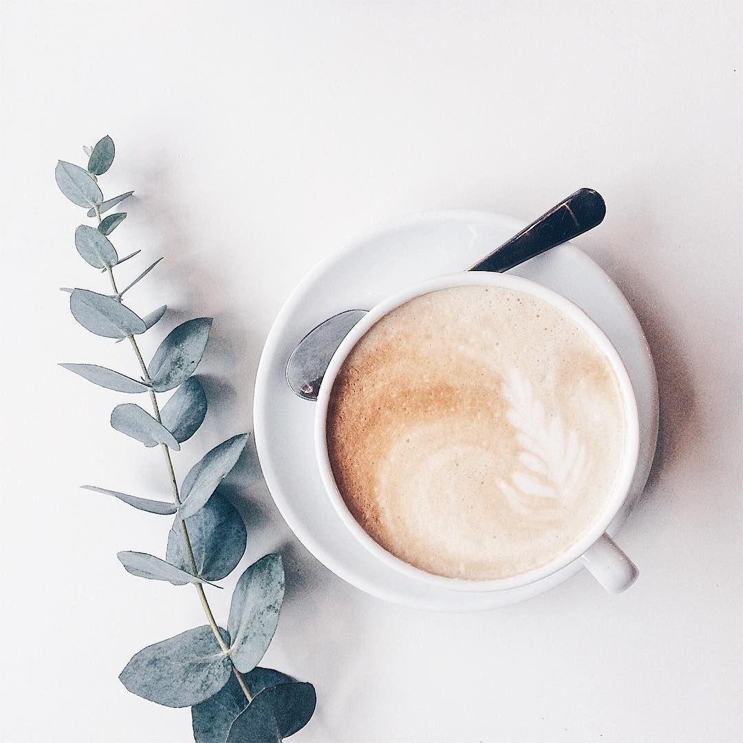 عرضه کافی میت موکاته Mokate Coffee Mate