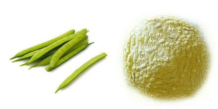 قیمت روز گوارگام هندی Guar Gum