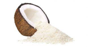 قیمت روز پودر نارگیل سریلانکا