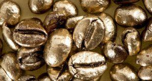 قهوه گلد هندی