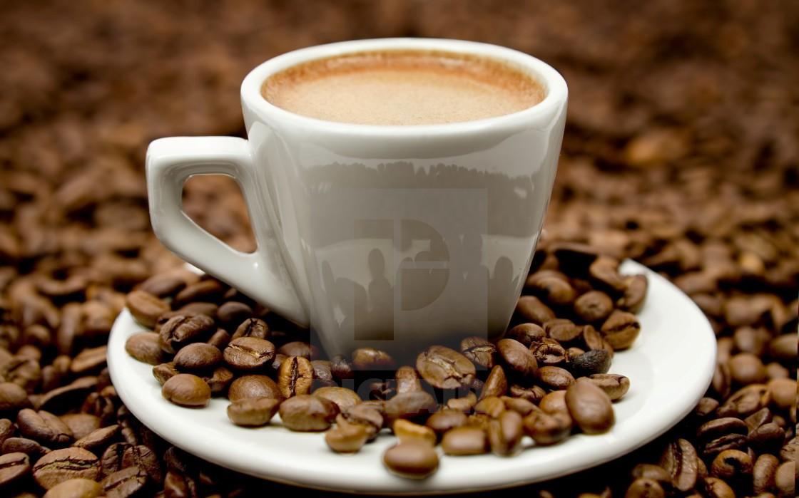 قیمت قهوه گلد هندی